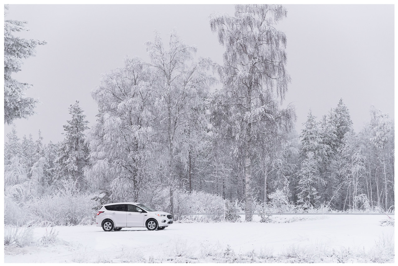 A Ford Kuga parked in front of some very frozen trees in the north of Finland.